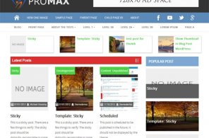 promax wordpress theme