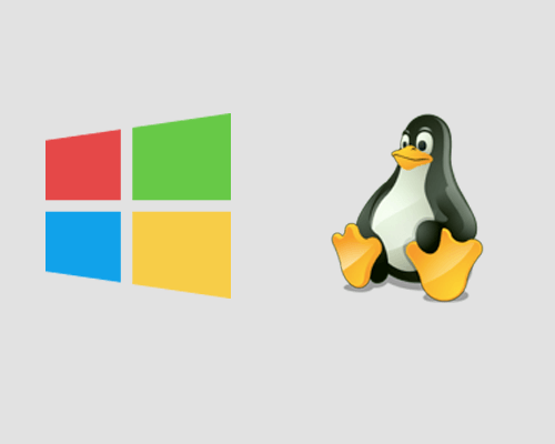 Choose Best Server Linux vs Windows